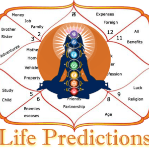 life-prediction-by rajiv sethi